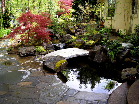 Residential Water Landscape